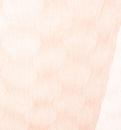 SAZANAMI コットンストールピンク商品画像